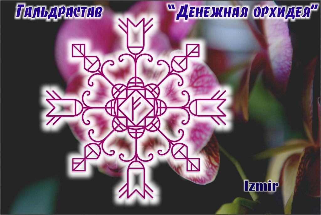 denegnaya-orhideja-izmir