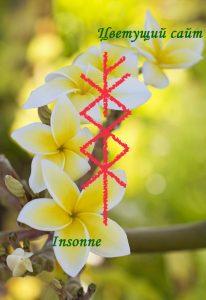 cvetuscij-sad-Insonne