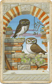 Мистическая Ленорман, Совы