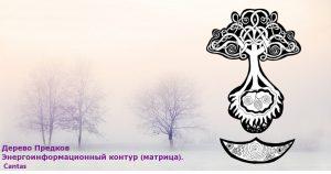 derevo-predkov-picture